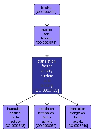 GO:0008135 - translation factor activity, nucleic acid binding (interactive image map)