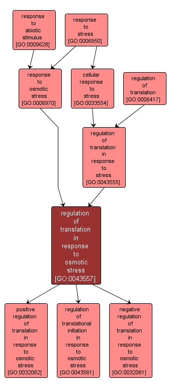 GO:0043557 - regulation of translation in response to osmotic stress (interactive image map)