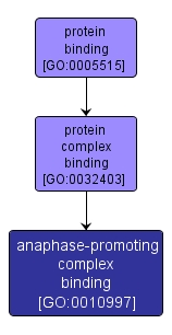 GO:0010997 - anaphase-promoting complex binding (interactive image map)